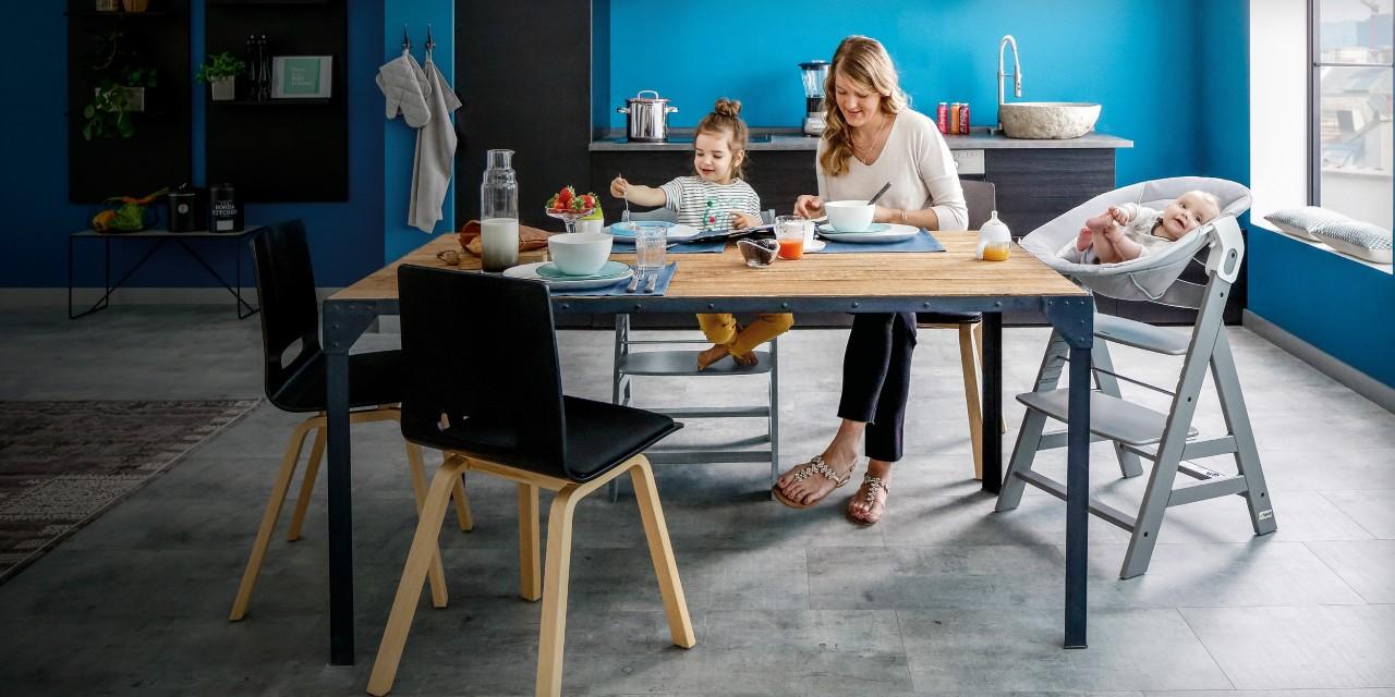 hauck alpha bouncer 2 in 1 100554. Black Bedroom Furniture Sets. Home Design Ideas
